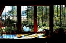 výhľad z okna - kuchyňa :-)