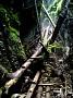 Národný park slovesnký raj-  roklina veľký sokol